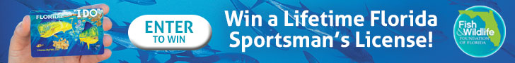 Enter to win a FWC Lifetime License